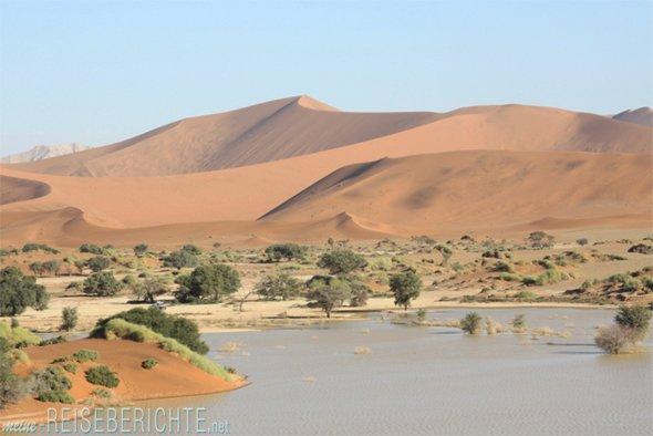 Afrika Namibia Rundreise Wüste
