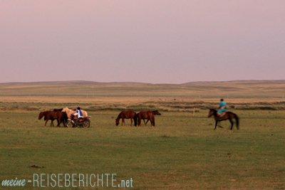 China Rundreise Reisebericht innere Mongolei Steppe Grasland Pferde