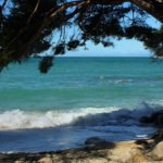 Rundreise Neuseeland: Abel Tasman Nationalpark in Nelson